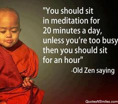 You should sit in meditation for 20 minutes a day, unless you're too busy then you should sit for an hour ~ Old #zen saying #Meditation