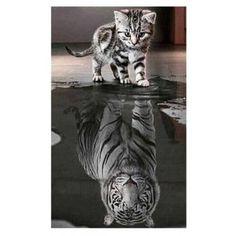 Reflection Cat Prints Diamond Paintings -