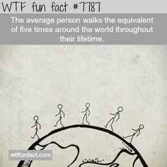 How much does the average person walk in their life time - WTF fun facts