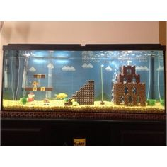 Awesome fish tank!!!