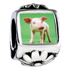 Pig Photo Flower Charms  Fit pandora,trollbeads,chamilia,biagi,soufeel and any customized bracelet/necklaces. #Jewelry #Fashion #Silver# handcraft #DIY #Accessory