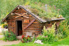 Kantishna Historic Cabin Photos, Denali National Park, Alaska