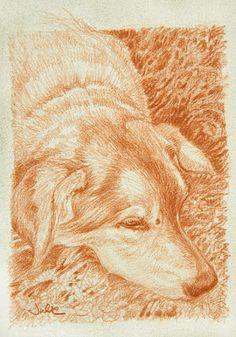 Carbón clasificado Studio Lápices dibuja tonos tonos No Mess Arte Artista Dibujo Pic