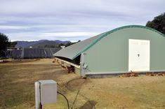 Selecciones Avícolas - Diversificación ecológica Outdoor Gear, Tent, Hen House, Types Of Chickens, Tentsile Tent, Outdoor Tools, Tents