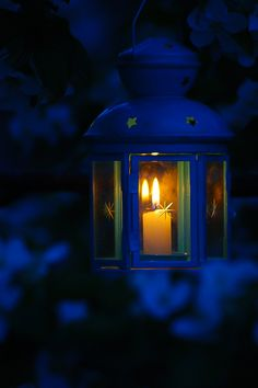 »✿❤Blue❤✿« Like a candle in the wind …