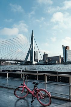 Day Trips From Amsterdam, Visit Amsterdam, Importance Of Water, South Holland, One Day Trip, Water Management, The Province, Windmills, Rotterdam