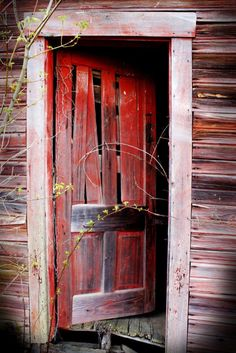 old red door                                                                                                                                                                                 More
