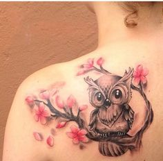 New found owl obsession.