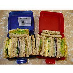 Tupperware Sandwich Keeper Tiffin/Lunch Box. Organize your kitchen the Tupperware way