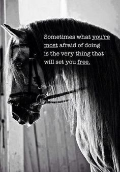 Become free by overcoming your fears