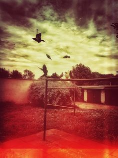 Amazing Photography, Art Photography, Lomography, Saturated Color, Sunset, Outdoor, Outdoors, Fine Art Photography, Sunsets
