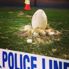Whole school literacy stimulus - giant egg appears in the school playground & kids find it when they come to school the next day.