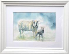 Sheep and Spring Lamb