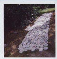 Paver project year one. Found objects in concrete. Stepping Stones, Concrete, Art Pieces, Objects, Random, Outdoor Decor, Artwork, Gifts, Home Decor