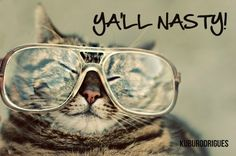 Ya'll Nasty. Cat. Glasses