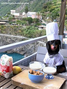 Chef Crusoe Cooking in Italy