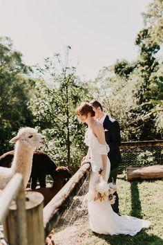 Photographer @twowildhearts_photo Flowers @rainforestgardensflorist Model @lucinda.kittel #aussiebride #wedding #dress #australia #melbourne #sydney #flowers #florist #inspo #planning #photoshoot #bohemian Outdoor Wedding Reception, Rustic Wedding, Cold Shoulder Wedding Dress, Heart Photography, Backless Wedding, Bride Gowns, Bridal Robes, Groom Attire, Wedding Photoshoot