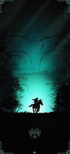 Post with 6202 votes and 172060 views. Shared by The 'Legend of Zelda' Poster Collection The Legend Of Zelda, Legend Of Zelda Poster, Legend Of Zelda Breath, Zelda Twilight Princess, Geeks, Film D'animation, Link Zelda, Video Game Art, Video Games