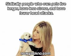 Pet Fact of the Day!   #aureles #pets #petfacts #facts #dogfacts #catfacts #interesting #jenniferaniston #puppy #stress #livelonger #life