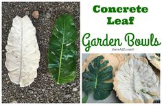 DIY Concrete Leaf Garden Bowl I recently expanded my garden so I decided to make a DIY Concrete Leaf Garden Bowl to help decorate the area.  This project is so easy that I ended up making a few!  I thought they would make excellent bird baths too!  I had learned from a friend that youContinue Reading...