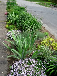 Cottage Garden Ideas to Create Perfect Spot A cottage garden's greatest appeal is that it seems to lack any conscious design. But even a cottage garden needs to be controlled. Some of the most successful cottage gardens start with a… Continue Reading → Sidewalk Landscaping, Landscaping Around Trees, Front Yard Landscaping, Backyard Landscaping, Landscaping Ideas, Flower Landscape, Landscape Design, Front Yard Planters, Dubai Garden