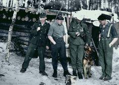 "1. Kompanie 6.SS Gebirgs-Division""Nord"" - Rgt. 11"