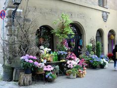 more gorgeous flower shops - Nürnberg