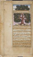 The Memoirs of Babur  - British Library