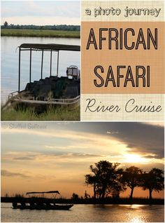 A Photo Journey - Pictures taken on my African Safari River Cruise along the Chobe River in Botswana Africa StuffedSuitcase.com travel
