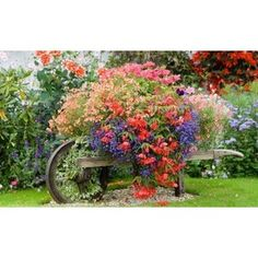 DIY Yard & Garden Ideas / A wheelbarrow full of colorful flowers in the countryside outside of London, England, the colors of which transcend within the home's English country decor.