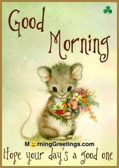 Cute Good Morning Quotes, Good Day Quotes, Good Morning Inspirational Quotes, Good Morning Sunshine, Good Morning Gif, Good Morning Friends, Good Morning Wishes, Morning Pics, Morning Memes