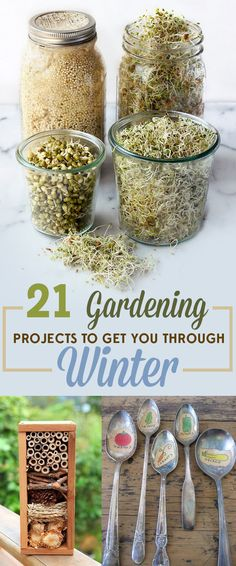 Hydroponic Gardening Ideas 21 Gardening Projects To Get You Through Winter - Don't let your green thumb frost over. Diy Garden, Garden Crafts, Edible Garden, Garden Projects, Garden Tips, Garden Club, Hydroponic Gardening, Container Gardening, Indoor Herb Gardening