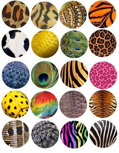 Animal and Insect skin patterns clip art collage sheet 2 INCH circles TIGER LEOPARD zebra peacock Bottle Cap Art, Bottle Cap Crafts, Bottle Cap Images, Collage Sheet, Collage Art, Deco Jungle, Illustrations Vintage, Arts And Crafts, Paper Crafts