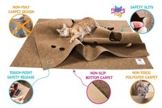 AmazonSmile : The Ripple Rug - Cat Activity Play Mat - Made in USA - Fun Interactive Play - Training - Scratching - Thermal Base - Multi Use Habitat Bed Mat : Pet Supplies