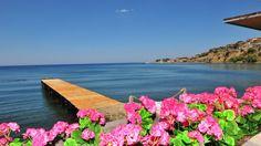 Lesvos - Koe Kreikka kuten silloin ennen. #Lesvos #Kreikka #matkablogi #Aurinkomatkat #matkailu #Kesäloma