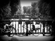 Bikes  by mio299