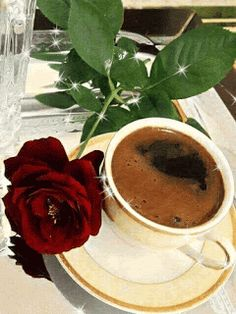 Good Morning Roses, Good Morning Coffee, Coffee Cafe, Coffee Drinks, Sweet Coffee, Rose Images, Brown Coffee, Coffee Is Life, Fantastic Art