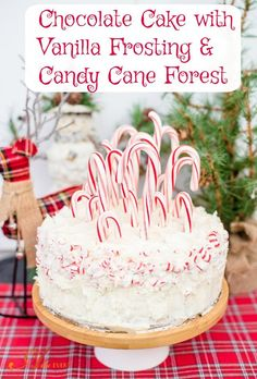 Chocolate Cake with Vanilla Frosting and Candy Cane Forest is a recipe I'm sharing at the Home for the Holidays Blog Tour. Click the pic to get the recipe and check out the fab holiday decor from top bloggers.