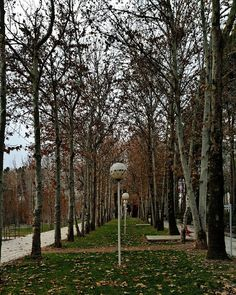 Sahneh City in the Province Kirmaşan