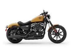 ▷ Harley-Davidson Custom Softail by Rick's Motorcycles Harley Davidson Night Rod, Harley Davidson Dark Custom, Harley Davidson Pictures, Harley Davidson Street, Harley Davidson Sportster 883, 883 Harley, Sportster Iron, Harley Davidson Motorcycles, Davidson Bike