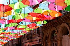 Colorful umbrellas on the streets of Portugal