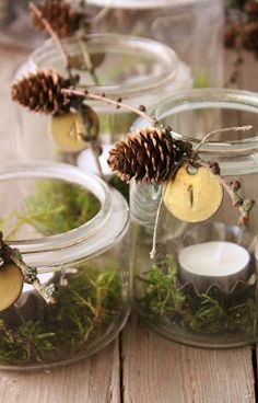 Simple Advent candle idea: Bed of cinnamon sticks, greens in the middle of the four jars?