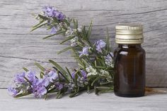 Learn 5 ways to make an herb infused oil for medicinal use.