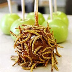 Arizona: Mealworm-Covered Caramel ApplesPhoenix, Oct. 14-Nov. 6, 2011    Along with deep-fried crickets, the Arizona Exposition & State Fair's Chef du' Jour booth sells caramel apples dipped in mealworms.