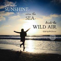#Sunshine #Frases