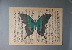 Vintage BUTTERFLY Print / Print on Vintage Music Page by EUvintage