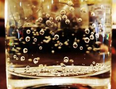 Kefir, Kombucha, Drinking Fountain, Lineup, Plastic, Alcohol