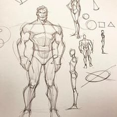 Character and proportion out of my head doodles. Human Figure Sketches, Figure Sketching, Figure Drawing, Sketchbook Drawings, Art Drawings, Drawing Body Proportions, Cartoon Body, Human Anatomy Drawing, Anatomy Sketches