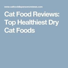 Healthiest Canned Cat Food For Indoor Cats