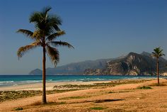 Al Mughsayl - beach